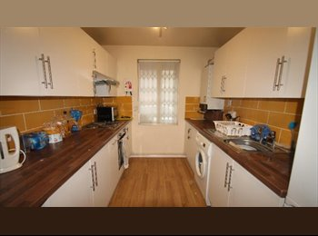 EasyRoommate UK - LARGE DOUBLE ROOM. CLOSE TO CITY CENTER. , Arboretum - £370 pcm