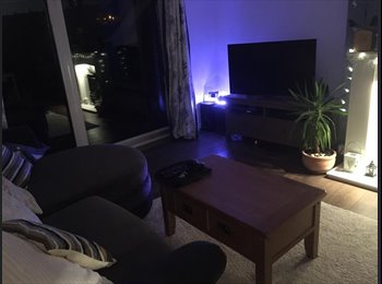 EasyRoommate UK - Single room to rent at cute bungalow in Newhaven , Newhaven - £500 pcm