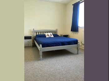 EasyRoommate UK - Spacious double room £550 pcm (bills included) , Basingstoke - £550 pcm