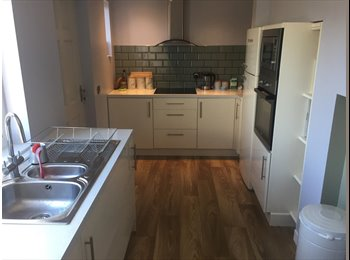 EasyRoommate UK - Looking for a lovely person to share my home with!, Potternewton - £500 pcm