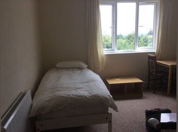 EasyRoommate UK - Newly refurbished bedsit in Dudley, Dudley - £368 pcm