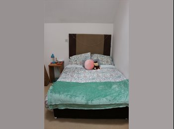 EasyRoommate UK - Flatmate Wanted for Charming City Centre Flat, Leeds - £413 pcm