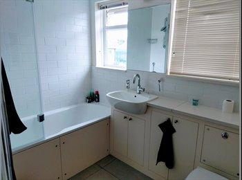 EasyRoommate UK - Bright double in 2 bedroom (pet friendly) flat, West Norwood - £800 pcm