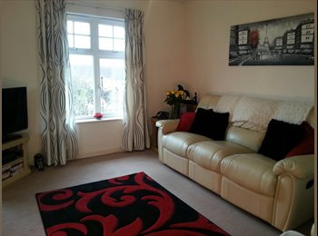 EasyRoommate UK - Clean, tidy, recently decorated double room available , Lampton - £525 pcm