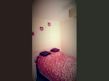 EasyRoommate UK - Beautiful double room, easy access to the city centre, Newtown - £500 pcm