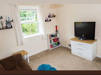 EasyRoommate UK - Spacious first floor flat, Salisbury - £750 pcm