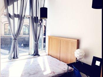 EasyRoommate UK - Beautiful Nothern Quarter Apartment , Northern Quarter - £600 pcm