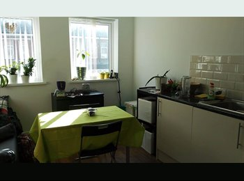 EasyRoommate UK - One bed flat to rent, Tredegarville - £625 pcm