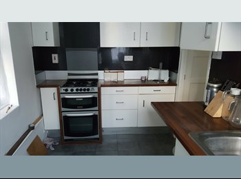 EasyRoommate UK - 3 Room Flatshare inbetween Shoreditch and Bethnal Green, within walking distance to Flower Market, Bethnal Green - £675 pcm