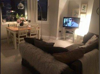 EasyRoommate UK - Beautiful flat while I go travelling :-) , Redland - £900 pcm