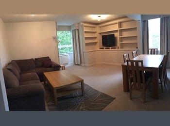 EasyRoommate UK - Double room in wonderful Clapham Junction flat, Battersea - £850 pcm