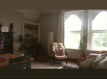 EasyRoommate UK - Bright double room in lovely big flat, Roath - £338 pcm