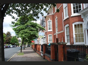 EasyRoommate UK - Large Bedsit in Leicester City Centre, Westcotes - £325 pcm