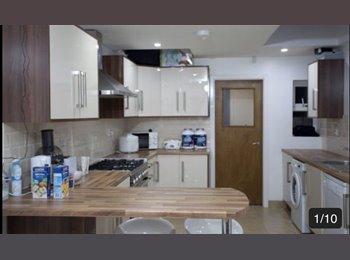 EasyRoommate UK - Double Room, 15 min walk from University, Upper Stoke - £435 pcm