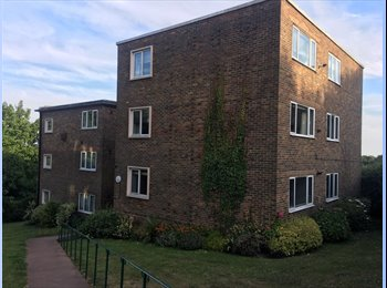 EasyRoommate UK - Large double room with additional office / store, West Blatchington - £800 pcm