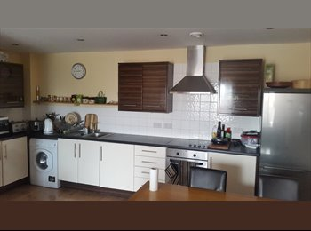 EasyRoommate UK - Single room , Montpelier - £550 pcm