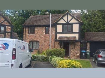 EasyRoommate UK - Rooms to let, Hemel Hempstead - £450 pcm