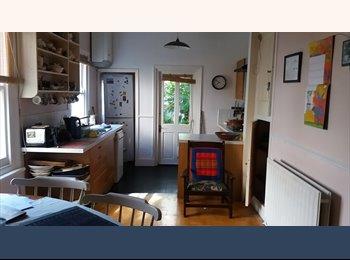 EasyRoommate UK - Room in creative, friendly house, Charlton - £600 pcm