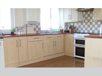 EasyRoommate UK - LARGE ROOMS SHARED HOUSE BASINGSTOKE, Basingstoke - £390 pcm