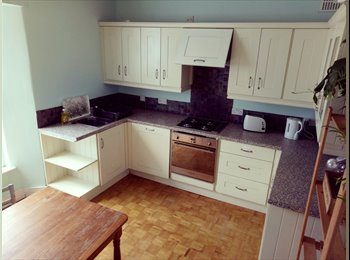 EasyRoommate UK - 3 bedroom house falmouth, Falmouth - £1,150 pcm