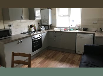 EasyRoommate UK - 2 Double Rooms Available in Central Shared Maisonette, Bills Included, Plymouth - £320 pcm