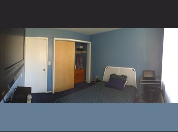 EasyRoommate US - Northend-Bridgeport, Bridgeport - $550 pm