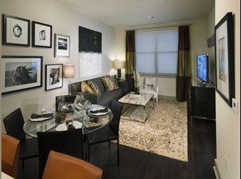 EasyRoommate US - Luxury apartment close to Red Line , Arlington - $1,500 pm