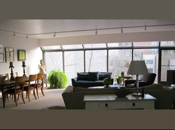 EasyRoommate US - The perfect downtown apartment, River North - $900 pm