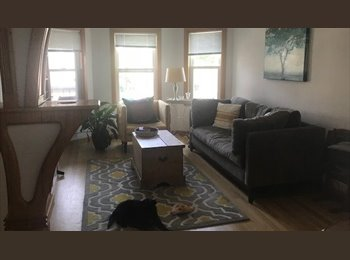 EasyRoommate US - Room available in a beautiful updated Brighton apartment... Seconds to the T, Commonwealth - $1,100 pm