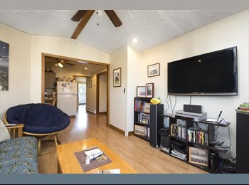 EasyRoommate US - Southie furnished - 1 BR avail in 2BR apt w/young professional (m) - near downtown/bars/beach! , City Point - $800 pm
