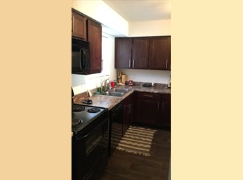 EasyRoommate US - STUDENT AT GSU LOOKING FOR A ROOMIE, Gresham Park - $550 pm
