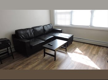 EasyRoommate US - Furnished room Close to all transp. for mature Professional, Port Richmond - $675 pm