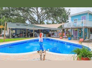 EasyRoommate US - DAYTONA BEACH .all included room in pool home , Daytona Beach - $525 pm