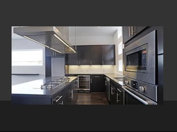 EasyRoommate US - Brand New modern uptown townhome for rent , Oak Lawn - $1,000 pm
