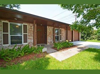EasyRoommate US - Looking for tenants (clean and responsible), Memorial - $700 pm