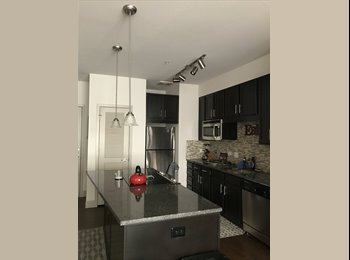 EasyRoommate US - Great Room With an Amazing Location, Lodo - $1,200 pm