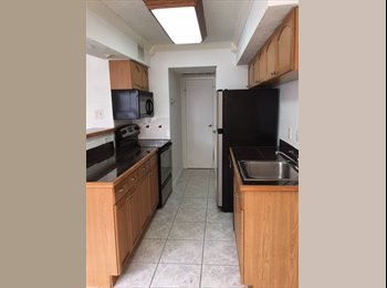 EasyRoommate US - 2 Bedroom 2 Bathroom Apartment in Texas Medical Center, Texas Medical Center - $1,300 pm