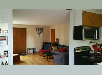 EasyRoommate US - Large Room Available on Top of Ballard! , Ballard - $850 pm