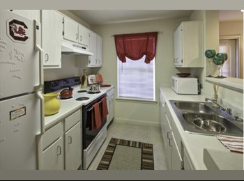 EasyRoommate US - January Rent PAID!! One Room in Ground Floor Apt with Excellent Roommates. Move In Ready! , Cayce - $509 pm