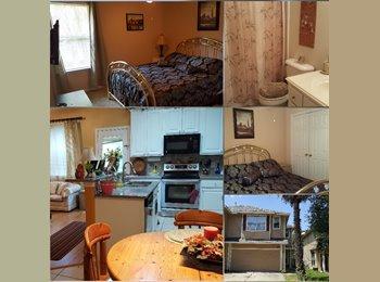 EasyRoommate US - Room for  Rent (Kingwood), Atascocita - $600 pm