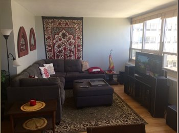 EasyRoommate US - Room in 2 bed/1 bath Lakeview condo overlooking the lake available now!, Buena Park - $900 pm