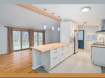 EasyRoommate US - A newly renovated house for this summer, Ann Arbor - $700 pm