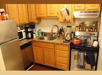 EasyRoommate US - Whole apartment, good size, nice kitchen, VERY CLOSE TO RED LINE, Columbus Park / Andrew Square - $1,875 pm