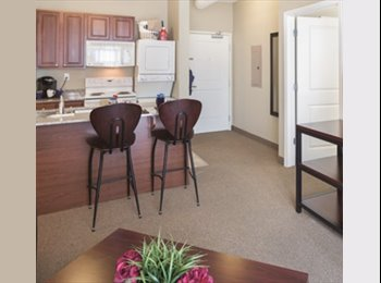 EasyRoommate US - Room Available for $350 / month plus 7 days, Ann Arbor - $350 pm