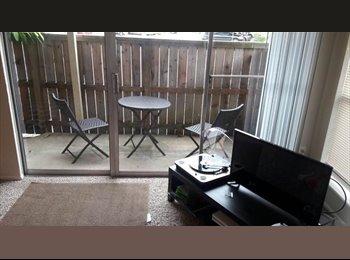 EasyRoommate US -  Memorial West Houston, Briarforest - $550 pm