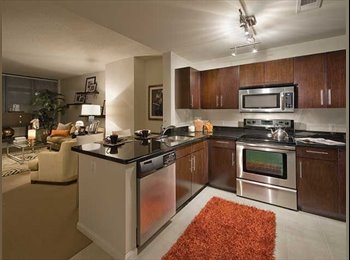 EasyRoommate US - Arlington, VA Luxury Apartment Roommate needed $1130 2br 2b, Columbia Heights - $1,130 pm