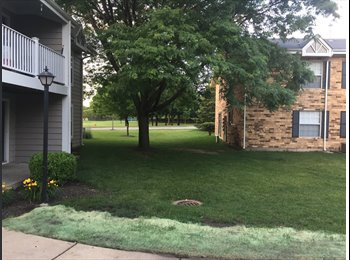 EasyRoommate US - Looking for Roommate in Naperville, IL 60563, Warrenville - $750 pm