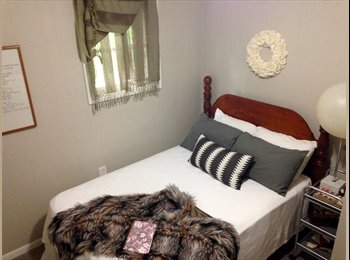 EasyRoommate US - Furnished Eclectic Bungalow, Pearland - $650 pm