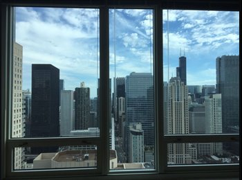 EasyRoommate US - Amazing place in the middle of River North, River North - $1,800 pm