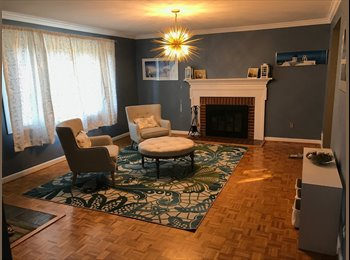EasyRoommate US - Spacious rooms for rent in a newly renovated house , Annandale - $900 pm